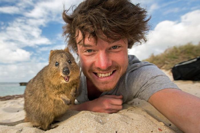 Il se prend en selfie avec des animaux à travers le monde !