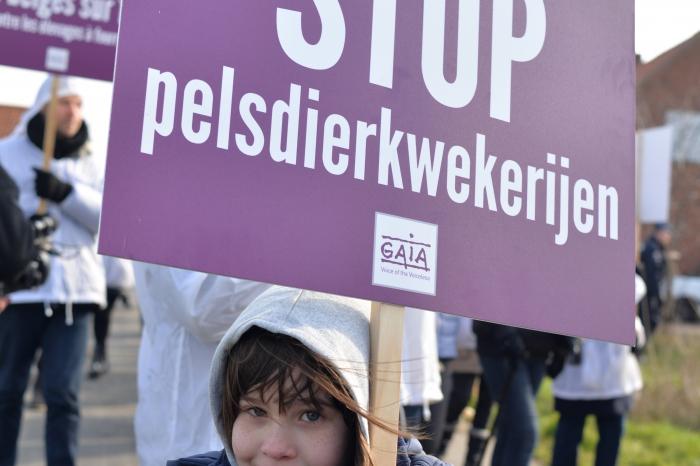 Nertsenkwekerij in Langemark sluit zijn deuren