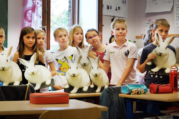 Une école passe à l'action pour protéger les lapins !