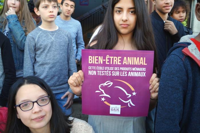School bant dierenleed