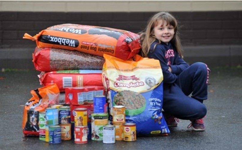 Elcie-May a rassemblé 140kg de nourriture pour les animaux du refuge
