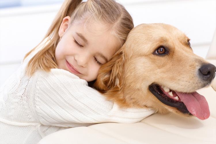 Adopter un ami pour la vie