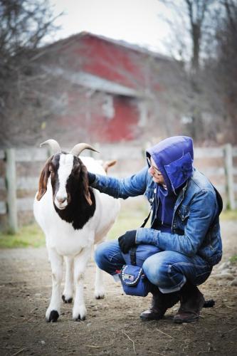 Dierenverzorger in een opvang voor boerderijdieren
