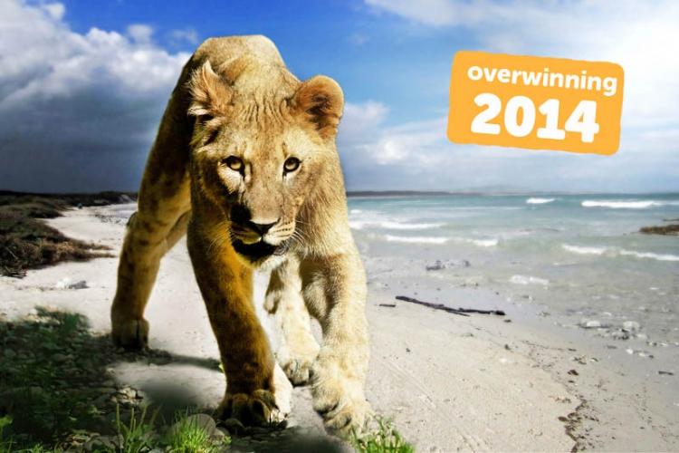 18967c7ab6a03a Sinds maart 2014 mogen circussen in België geen wilde dieren meer gebruiken  voor hun shows. Deze belangrijke overwinning is er gekomen door de inzet  van ...