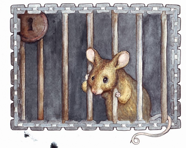 MOUSE IN CAGE  /  Un dessin par Fenster