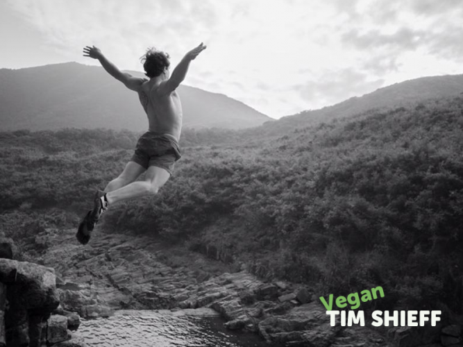 TIM SHIEFF est vegan